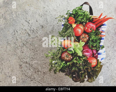 Basket full of healthy fruit and vegetables - Stock Photo