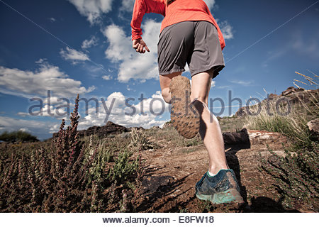 Woman trail running, Colorado, America, USA - Stock Photo