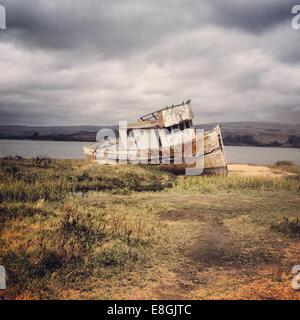 Shipwrecked boat, Marin County,  California, America, USA - Stock Photo