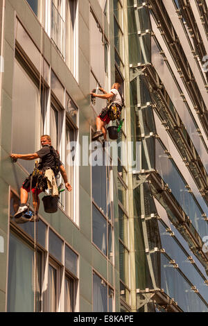 Window cleaners working on high-raised office building - Stock Photo