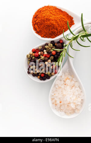 Overhead view of Himalayan rock salt, red cayenne pepper and black peppercorns in ceramic spoons with a sprig of - Stock Photo