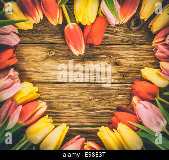 Fresh colourful tulips in a heart-shaped frame on a grunge wood background with weathered woodgrain texture and - Stock Photo