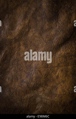 Abstract background of dark brown puckered leather with a rough wrinkled texture and shadowing - Stock Photo