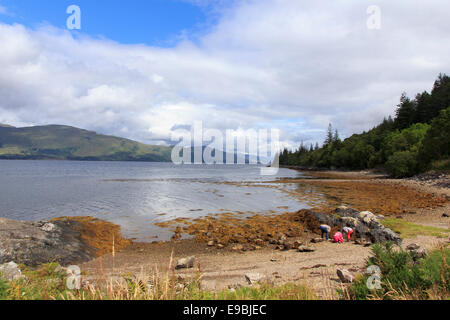 A family exploring rock pools on the banks of Loch Linnhe, Lochaber, Highland, Scotland - Stock Photo