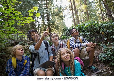 Teacher with children pointing in woods - Stockfoto
