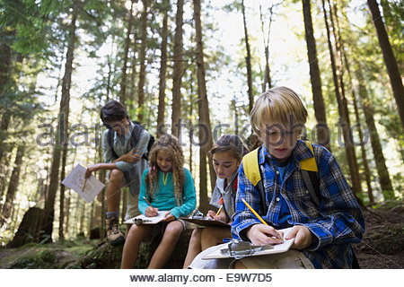 Teacher and children with clipboards in woods - Stockfoto