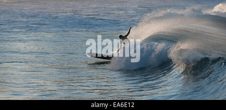 Australia, New South Wales, Sydney, Surfer in afternoon - Stock Photo