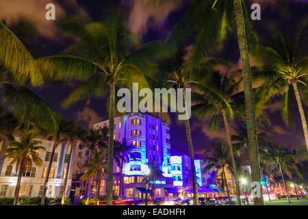 Miami Beach Florida Art Deco District Ocean Drive dusk evening night palm trees Park Central hotel building nightlife - Stock Photo