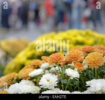 Autumn flowers on the market in rainy day with blurred silhouettes of people - Stock Photo