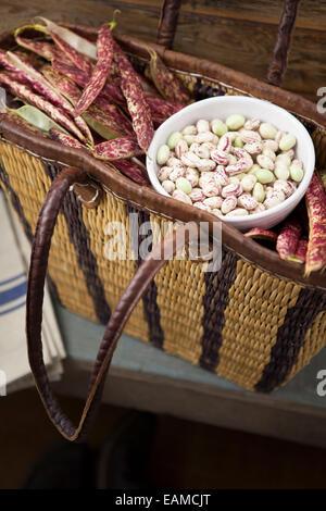 Borlotti Beans in Basket - Stock Photo