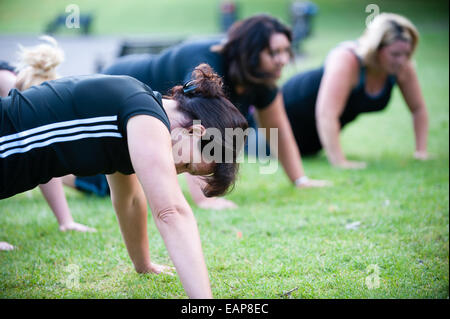 Four womem doing press-ups in an outdoor bootcamp early in the morning in a public park as part of a fitness regime - Stock Photo