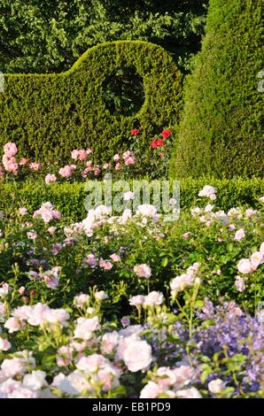 rose garden britzer garten berlin germany stock photo royalty free image 27873486 alamy. Black Bedroom Furniture Sets. Home Design Ideas
