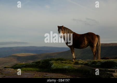 Evening autumn light over the Brecon Beacons National Park, South Wales, UK, EU. - Stock Photo