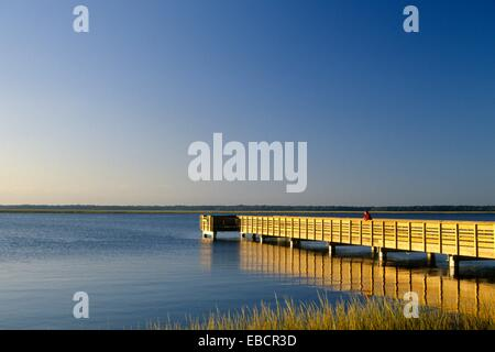 Island Off St Mary Ga