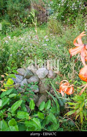 Natural stones on a pile of stones as shelter habitat Habitat deutschland