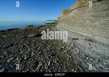 Byrum's raukar, shell limestone stacks, Sweden, Oeland, Byrum Raukar - Stock Photo