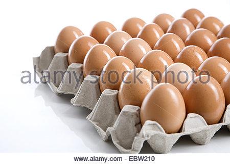 brown eggs in carton - Stockfoto