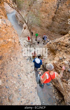 Africa, Namibia. Sossus Dune Lodge.  Namib Desert. Sossusvlei, Naukluft Park. People hiking in canyon. - Stockfoto
