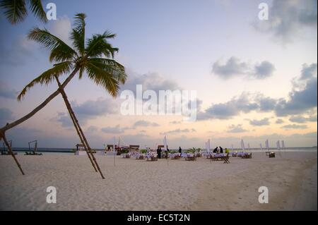 dinner at the Beach - Stockfoto