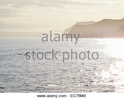 Man on stand up paddleboard on ocean - Stock Photo