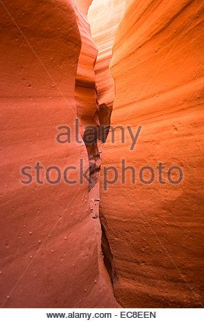 Narrows of a canyon, Utah, USA - Stock Photo