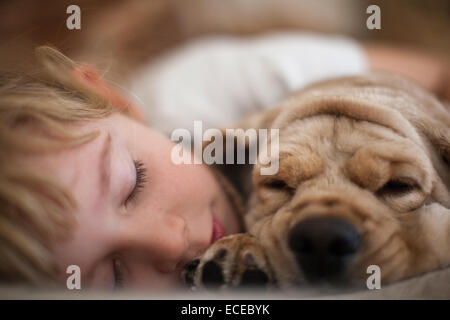 Cute girl (6-7) sleeping with her dog - Stock Photo