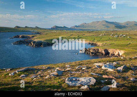 View of Brandon Mountain and the Dingle Peninsula from Clogher Head, County Kerry, Ireland. - Stock Photo