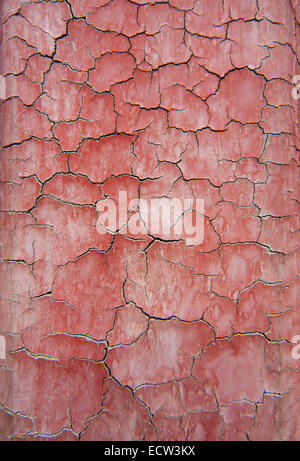 Beijing forbidden city: detail of peeling paint on wall. - Stockfoto