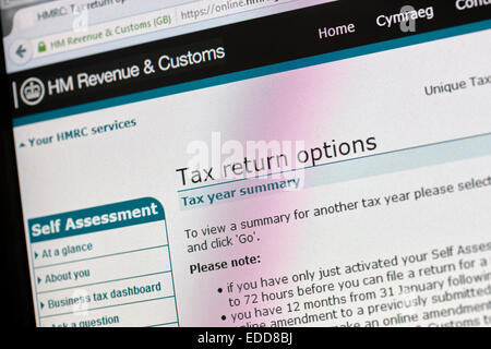 Income Tax Self assessment statement Stock Photo, Royalty ...