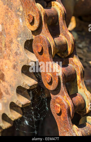 Rusty roller chain and toothed wheel , close-up - Stock Photo