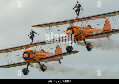 AeroSuperBatics Ltd is a British aerobatics and wingwalking team. As of 2011, they perform as the Breitling Wingwalkers - Stock Photo