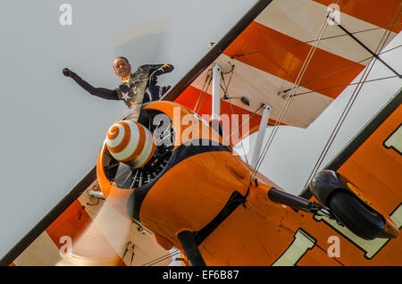 AeroSuperBatics Ltd is a British aerobatics and wingwalking team. As of 2011, they perform as the Breitling Wingwalkers - Stock Photo