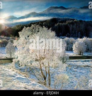 Frosty winter wonderland near Glenfinnan, Lochaber - Stockfoto