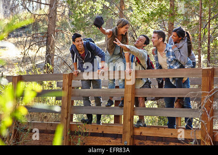 Five young adult friends fooling around on wooden bridge in forest, Los Angeles, California, USA - Stock Photo
