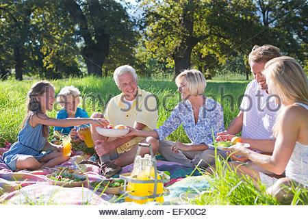 Multi generation having picnic in treelined field - Stockfoto