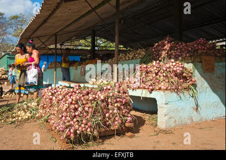 Horizontal view of the main fruit and vegetable market in Camaguey, Cuba. - Stock Photo