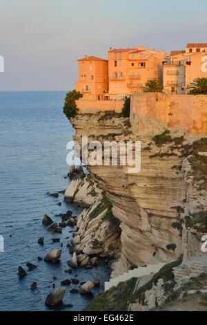 The medieval old town on the limestone cliff in the morning light, Bonifacio, Corse-du-Sud, Corsica, France - Stockfoto