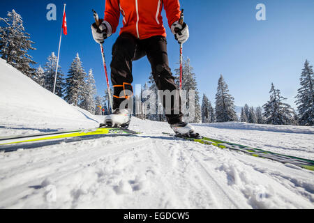 Woman cross-country skiing, Gantrisch area, Berner Oberland, Canton of Bern, Switzerland - Stock Photo