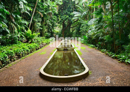 Water feature in Allerton National Tropical Botanical Garden within ...