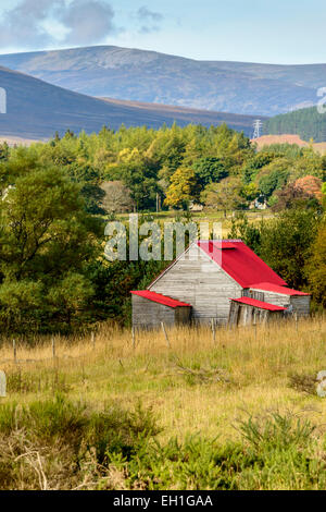 A red tin roof on a wooden hut in a rural area of the Cairngorms, Scotland. - Stock Photo