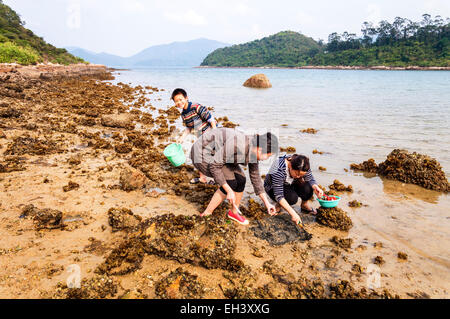 People children digging for shellfish at Star Fish Bay, New Territories, Hong Kong SAR - Stock Photo