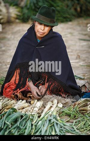 Ecuador, Cotopaxi, Zumbahua, day of the village of Zumbahua market, portrait of a peasant woman selling fresh produce - Stock Photo