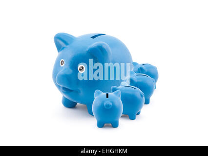 Blue piggy banks feeding from their mother - Stockfoto