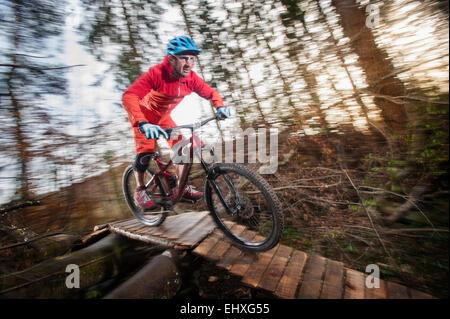 Mountain biker crossing wooden bridge in a forest, Bavaria, Germany - Stock Photo