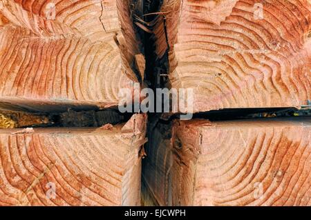 split and quartered wood from the sequoia - Stock Photo