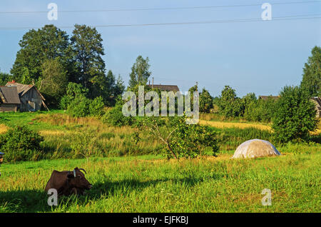 Rural landscape. Brown cow and haystack on pasture. - Stock Photo