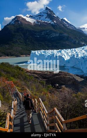 Photographer walking on the footbridge.Perito Moreno glacier.Los Glaciares National Park.Patagonia.Argentina - Stockfoto