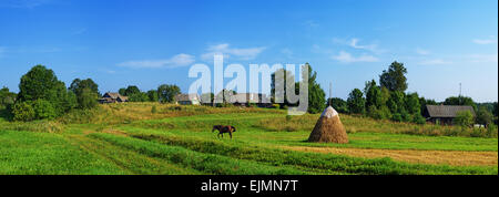 Rural landscape. Brown horse and haystack on pasture.Panorama. - Stock Photo