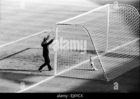 England v West Germany World Cup Final 1999, 30th July 1966.  Amid the happy frenzy, a lone supporter paid homage - Stock Photo