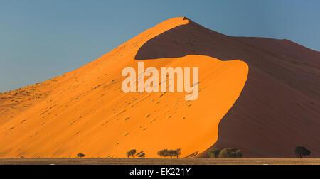 Sand dune 45 near Sossusvlei in Namib-Naukluft National Park Namibia at sunrise - Stockfoto